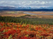 This is the ANWR that Democrats want people to think of when the concept of drilling is brought up.